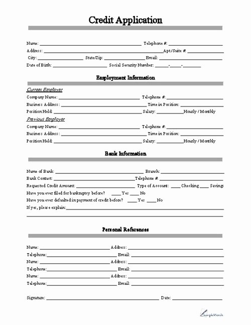 Credit Reference Sheet Template Best Of Free Printable Credit Application form form Generic