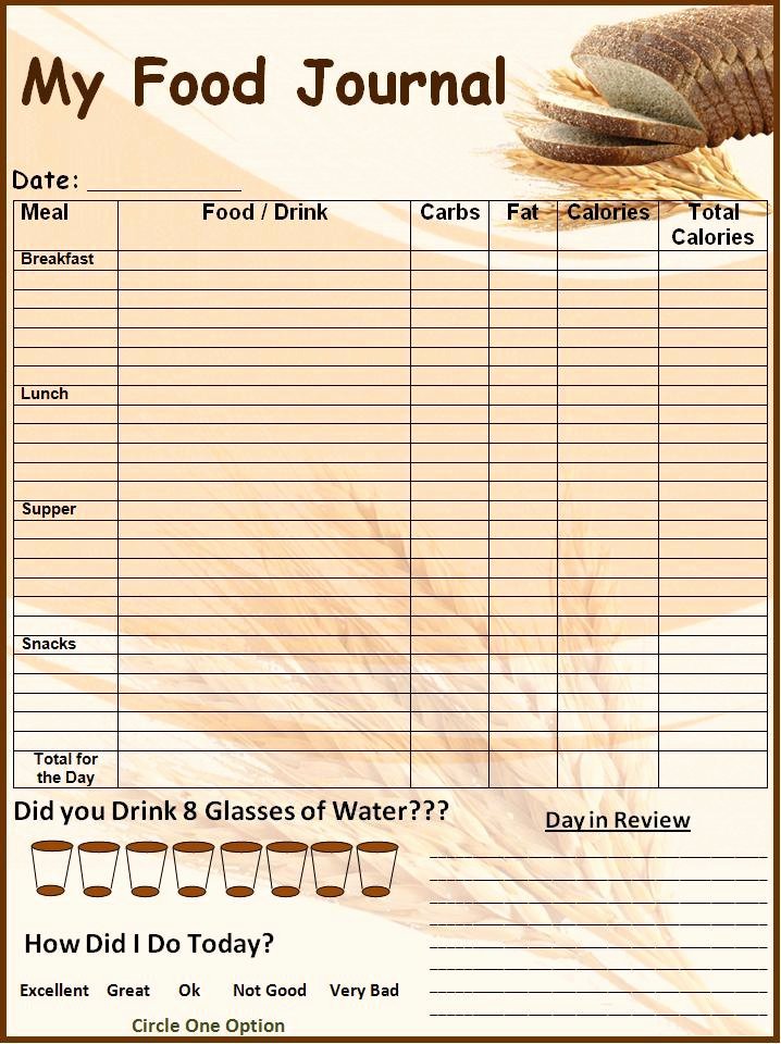 Daily Food Journal Printable Awesome Food Log Template Printable In Excel format Excel Template