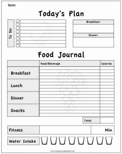 Daily Food Journal Printable Lovely 8 Best Of Cooking Worksheets for Students