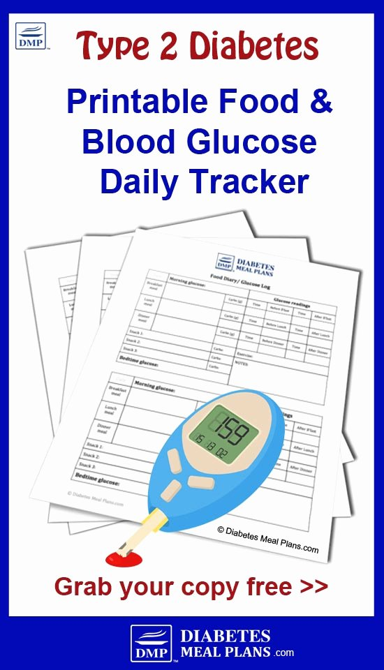 Diabetes Food Diary Printable Fresh Food and Blood Glucose Tracker [printable]
