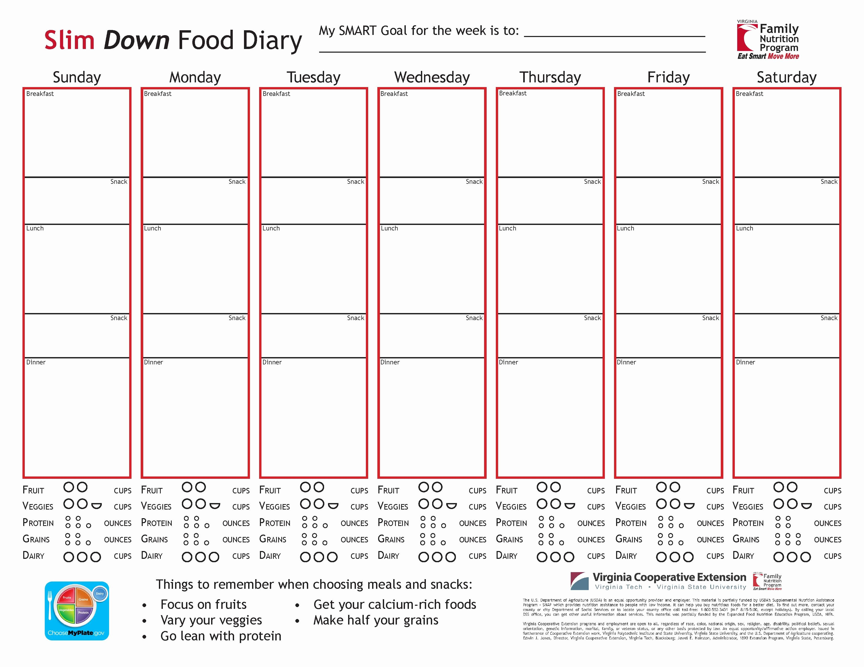 Diabetes Food Diary Printable Inspirational Food Diary