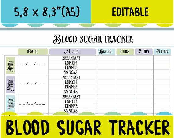 Diabetes Food Diary Printable Unique Blood Sugar Tracker Diabetic Log Blood Sugar Log Blood