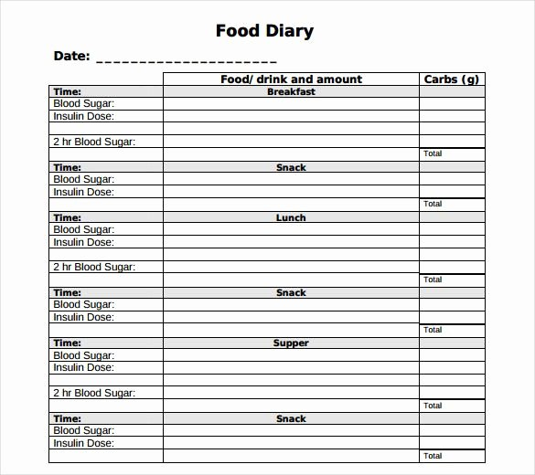 Diabetes Tracking Chart Printable Best Of Food Log Template 29 Free Word Excel Pdf Documents