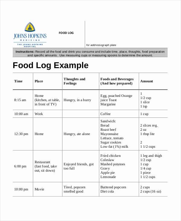 Diabetic Food Journal Template Elegant 33 Free Log Templates