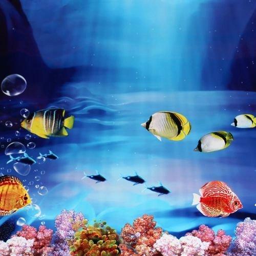 Diy Aquarium Background Paper Beautiful 25 Best Ideas About Aquarium Backgrounds On Pinterest