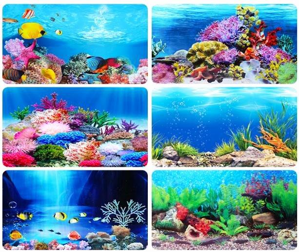 Diy Aquarium Background Paper Unique Aquarium Wallpaper Custom Hd Background Paper Landscaping