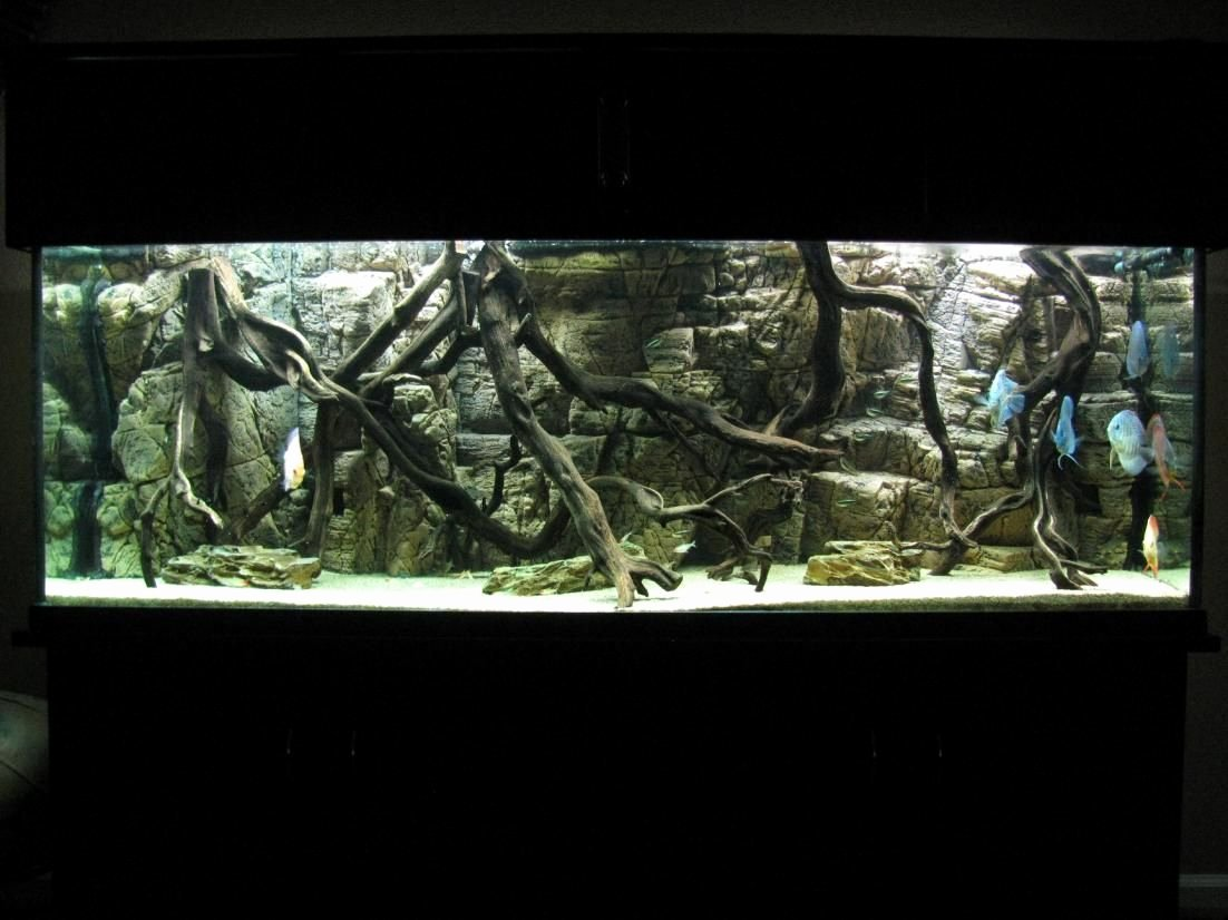 Diy Fish Tank Background Paper Beautiful Pin On 3d Background Aquariums