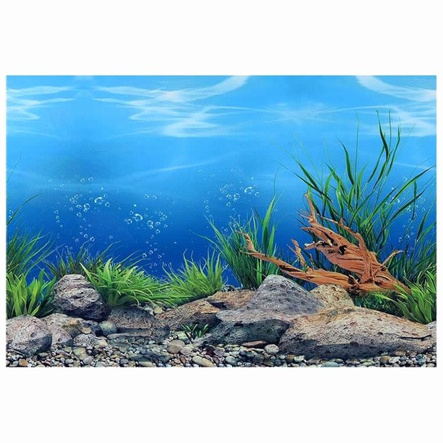 "Diy Fish Tank Background Paper Best Of 9094 23 3"" X 60"" Double Sided Fish Tank Poster Sea World"