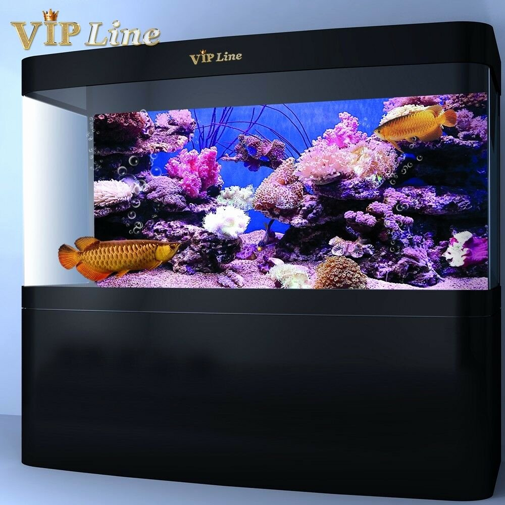 Diy Fish Tank Background Paper Fresh Coral Aquarium Background Poster Pvc Fish Tank Decorations