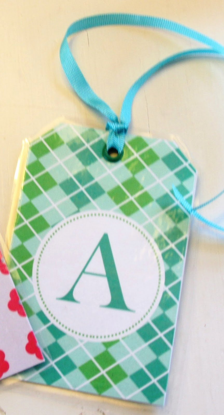 Diy Luggage Tags Template Unique Stranded In Cleveland Kids Luggage Tags Diy