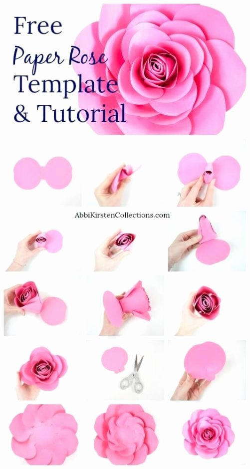 Diy Paper Flower Template Awesome Free Paper Rose Template Diy Camellia Rose Tutorial
