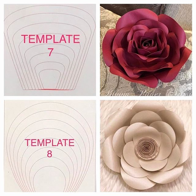 Diy Paper Flower Template Elegant Paper Flower Templates Craft Room