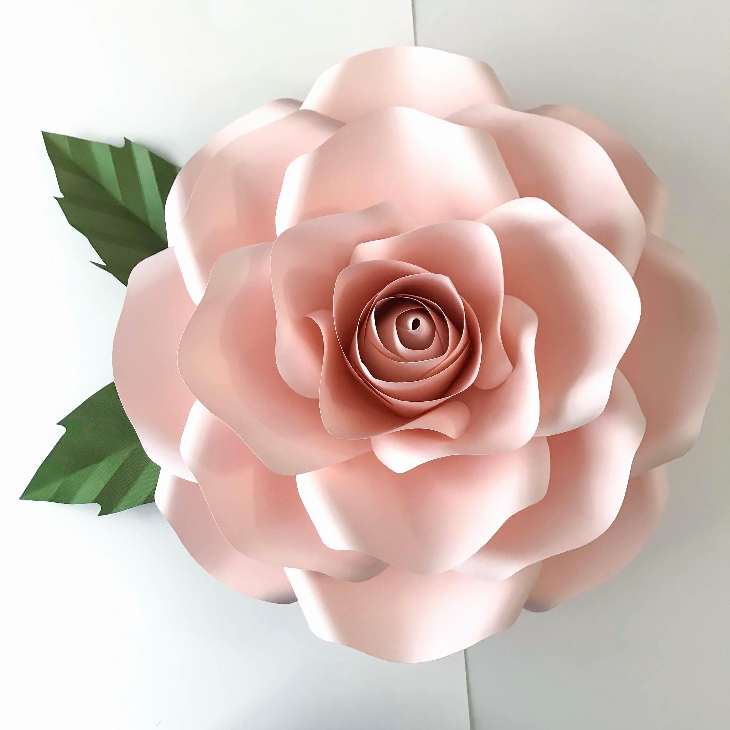 Diy Paper Flower Template Elegant Svg New Rose Paper Flower Template Diy Cricut and