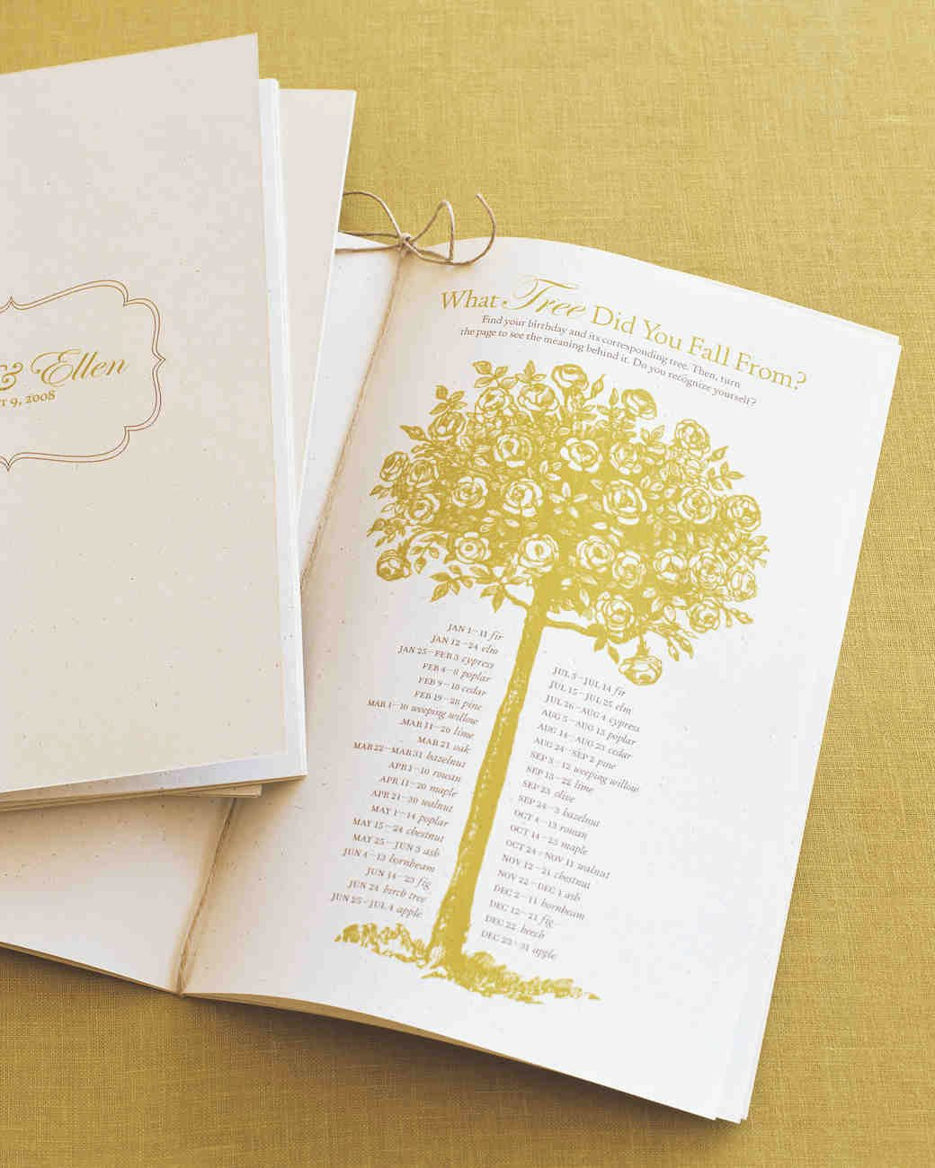 Diy Wedding Program Templates Free Best Of 25 Ways to Upgrade Your Diy Wedding Programs
