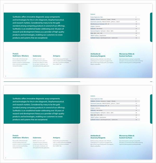 Drug Card Template Microsoft Word Unique 8 Drug Brochures Psd Vector Eps