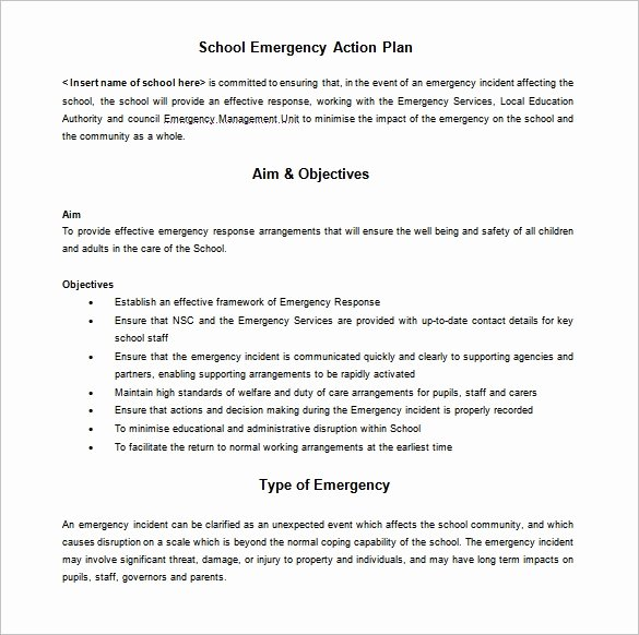 Emergency Action Plan Sample Luxury 12 School Action Plan Templates Word Pdf