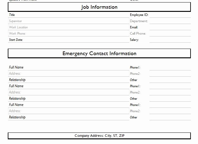 Employee Information Sheet Template Fresh Record Of Employee Information form format Word and Excel