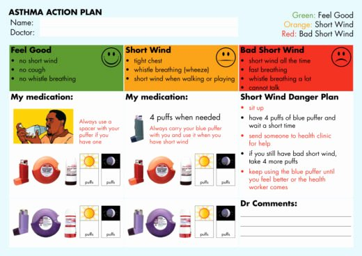 Example Of Action Plan Best Of asthma Action Plan Library National asthma Council Australia