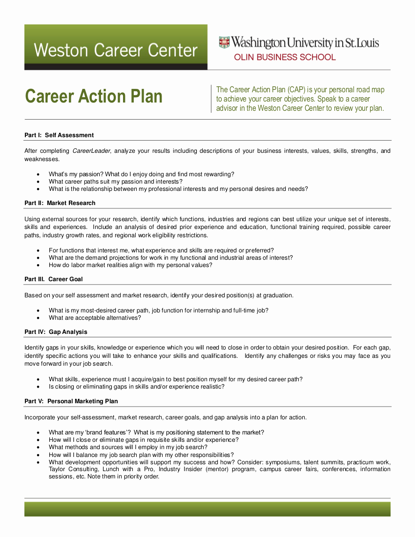 Example Of Action Plan Elegant 11 Career Action Plan Examples Pdf Word