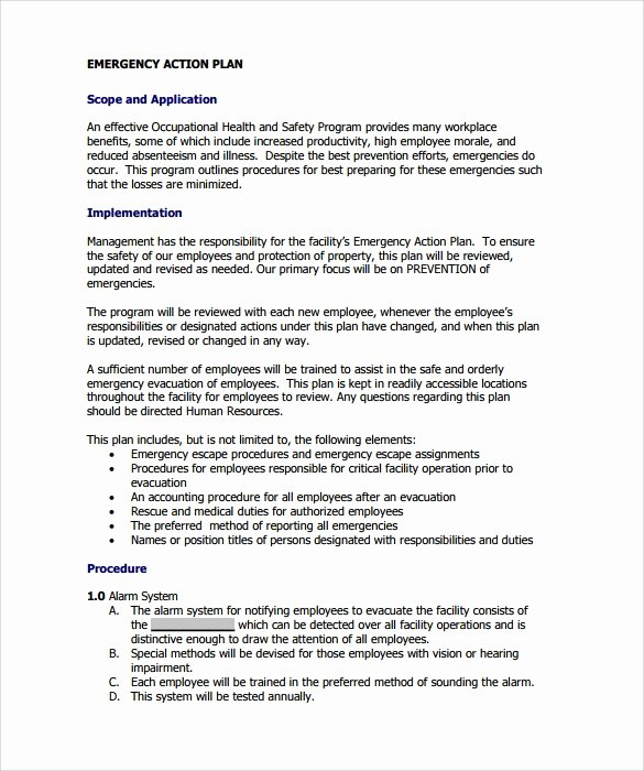 Example Of Action Plan New Sample Emergency Action Plan Template 9 Documents In