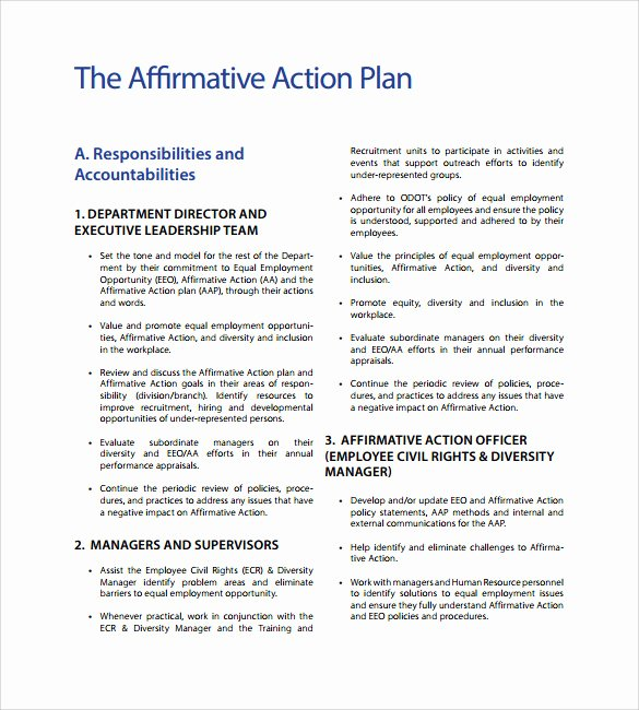 Example Of Action Plan Unique Sample Affirmative Action Plan 9 Documents In Pdf Word