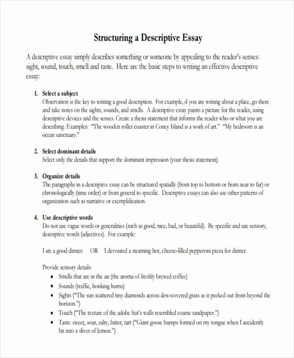 Example Of Descriptive Essay Awesome Help with A Descriptive Essay What is A Descriptive
