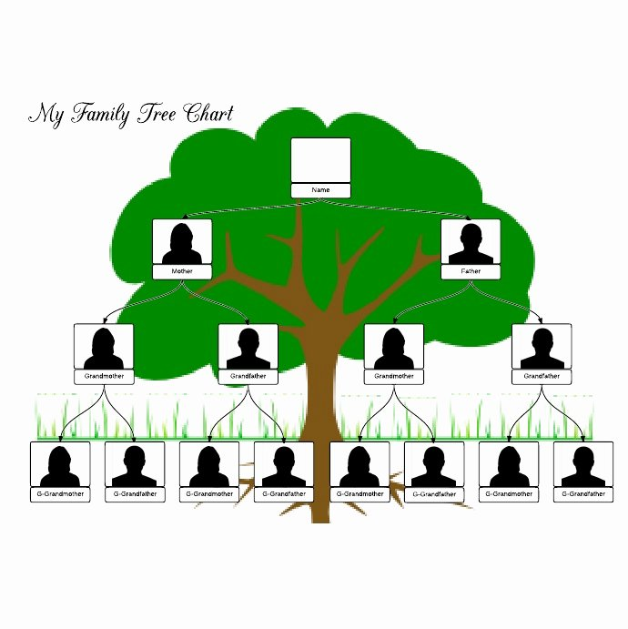 Example Of Family Tree Chart Elegant 108 Best Images About Family Tree Template On Pinterest