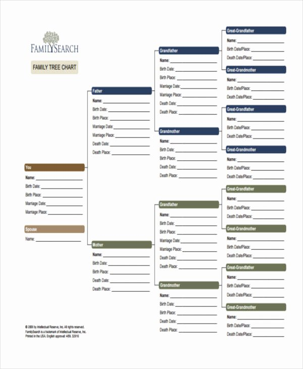 Example Of Family Tree Chart Inspirational 9 Family Tree Chart Templates Free Samples Examples
