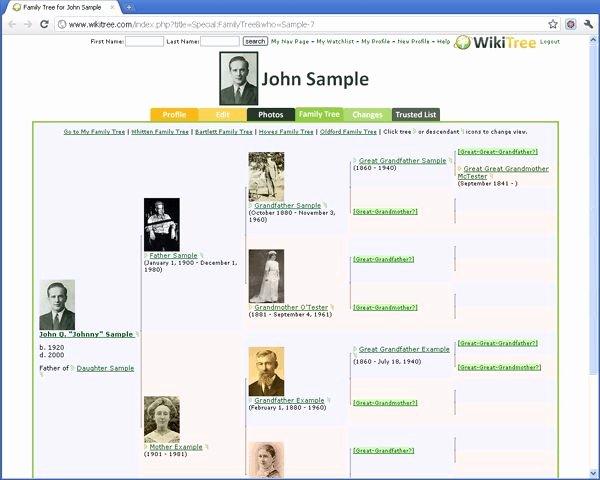 Example Of Family Tree Chart Inspirational Best 25 Family Tree Diagram Ideas On Pinterest