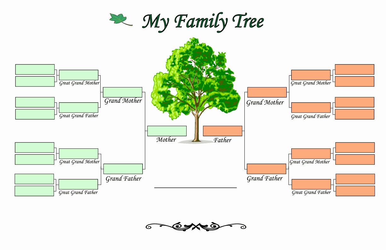 Example Of Family Tree Chart Inspirational Family Tree Templates