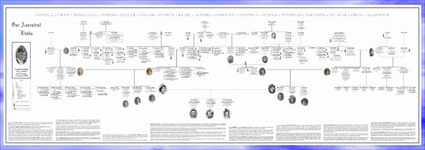 Example Of Family Tree Chart Inspirational Twigs and Branches Family Tree Charts