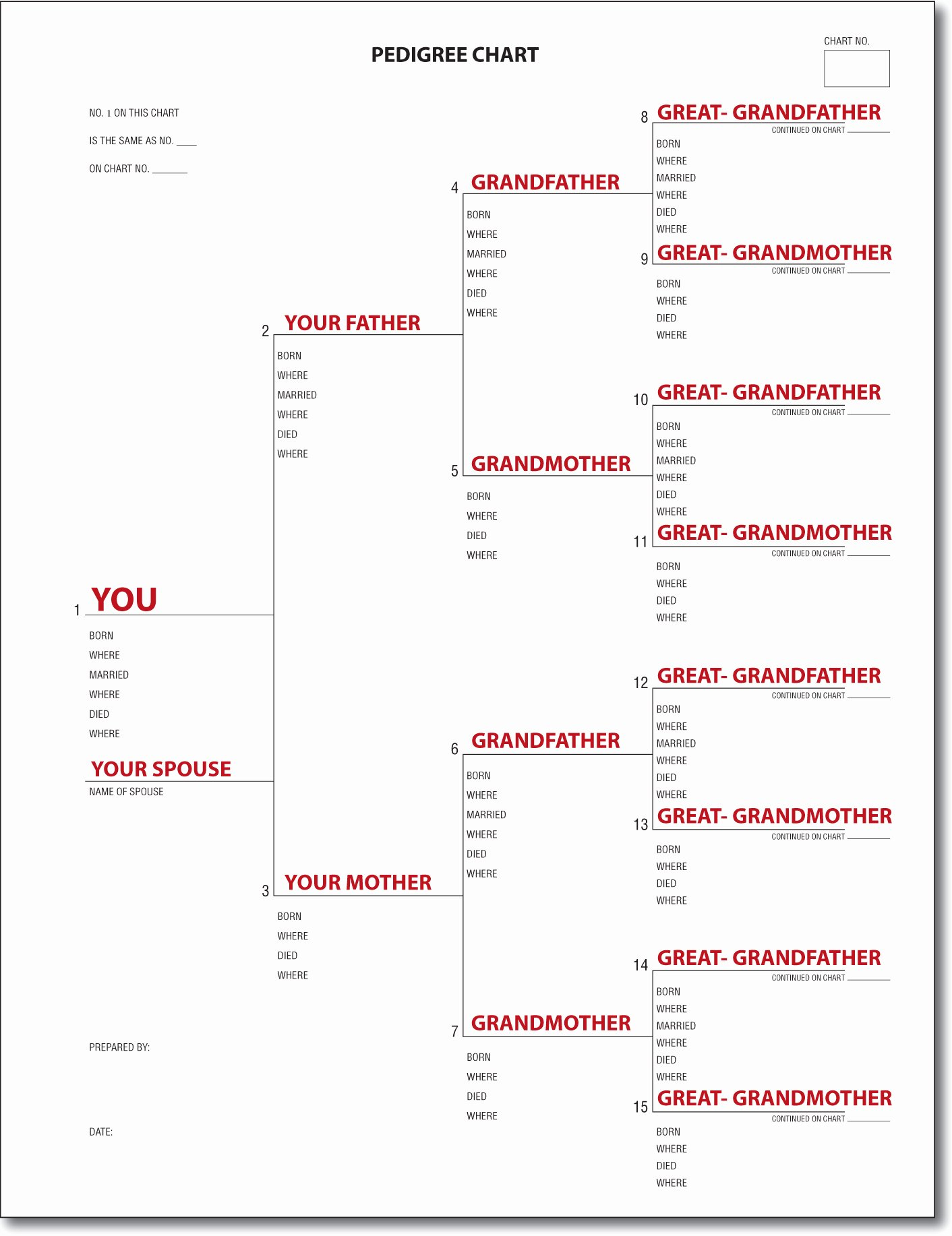 Example Of Family Tree Chart New A Pedigree Chart