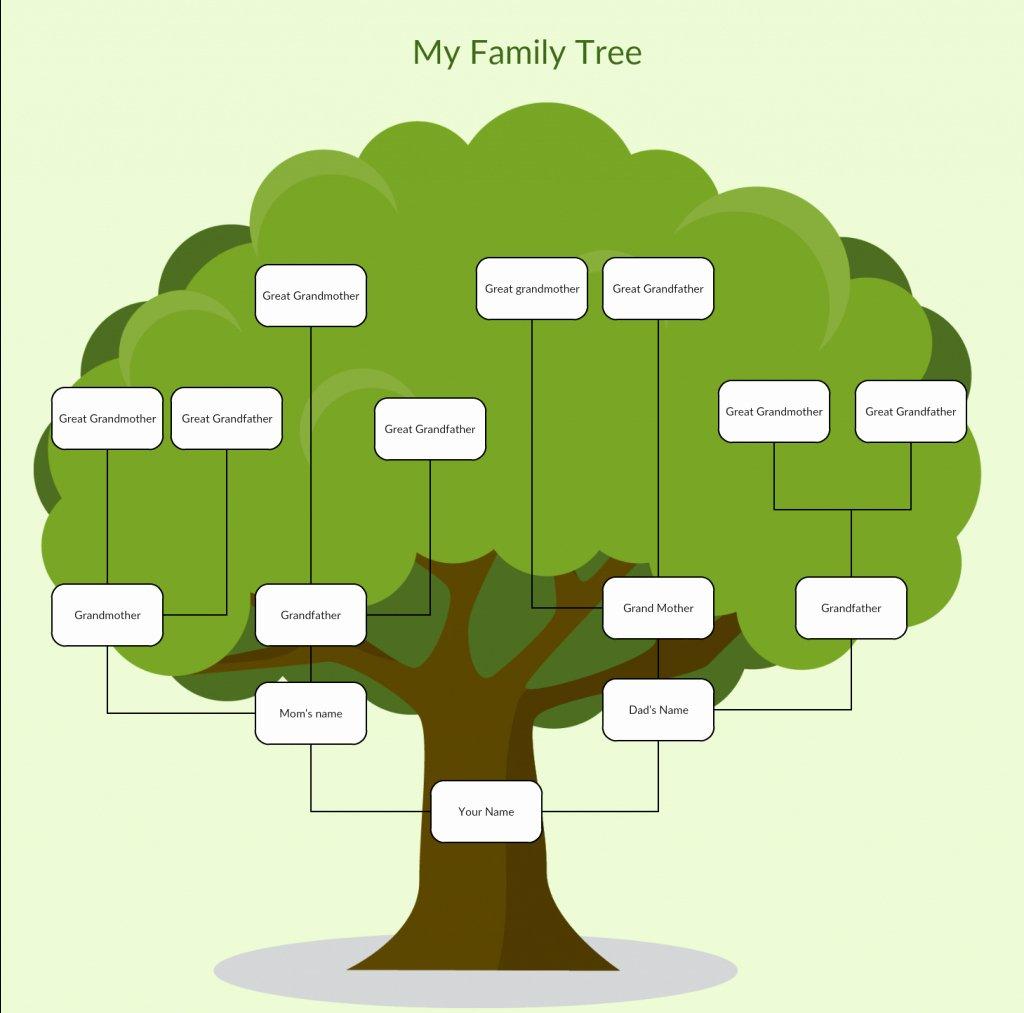 Example Of Family Tree Chart New Family Tree Spreadsheet Template Google Spreadshee Family