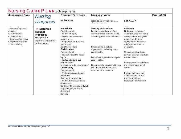 Examples Of Nursing Care Plans Awesome Nursing C A R E P L A N Schizophrenia Drjma
