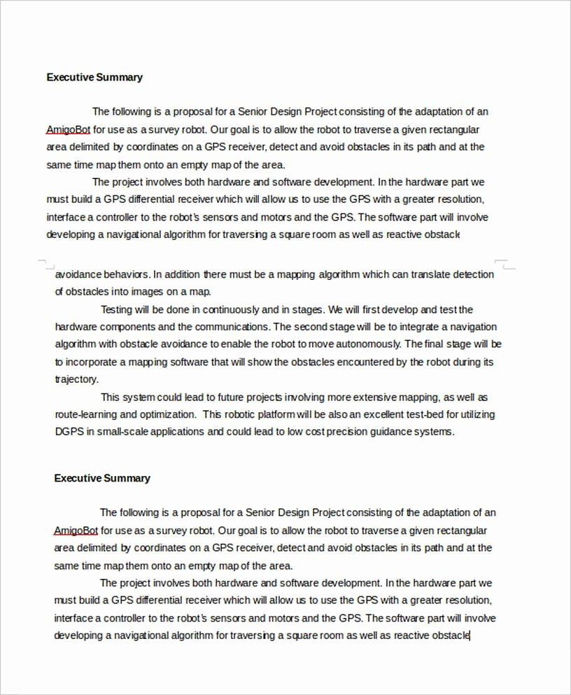 Executive Summary Outline Template Beautiful Executive Summary Template
