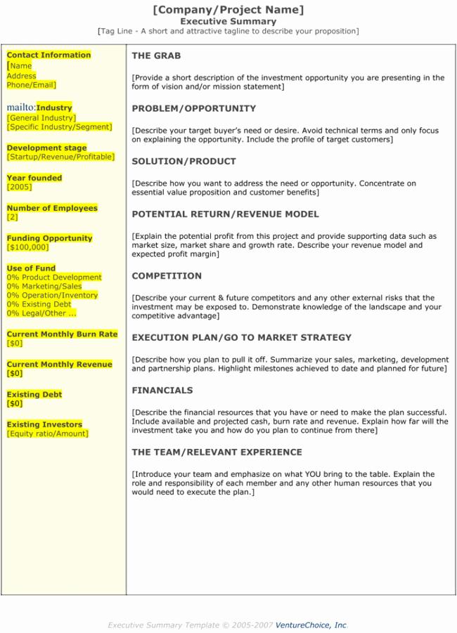 Executive Summary Outline Template Elegant 5 Executive Summary Templates for Word Pdf and Ppt