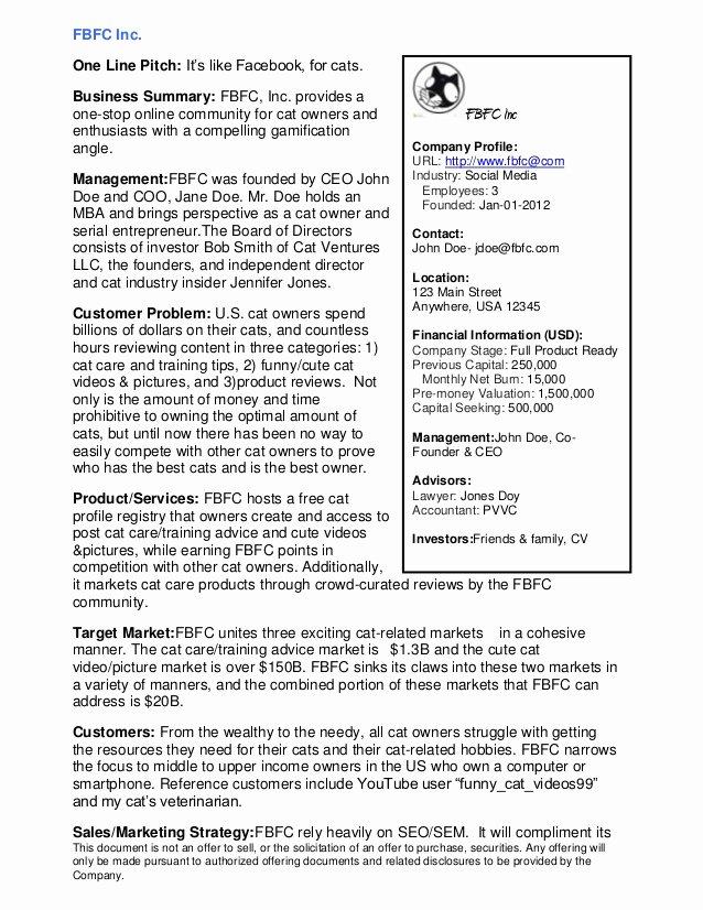 Executive Summary Outline Template Inspirational Executive Summary Example Alisen Berde