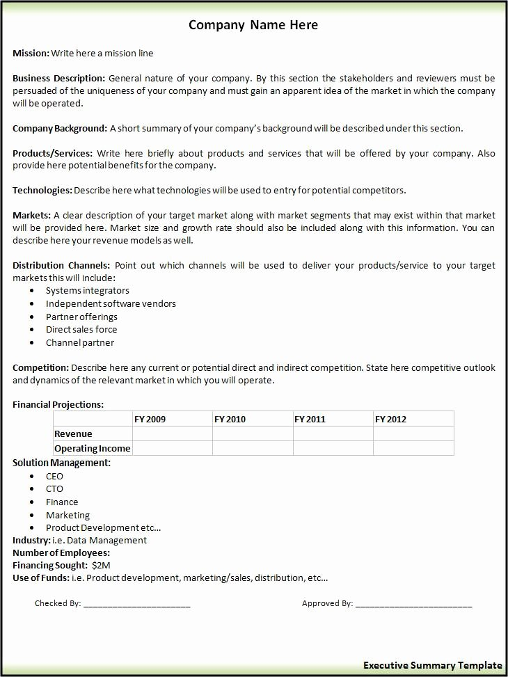 Executive Summary Outline Template Lovely Executive Summary Template