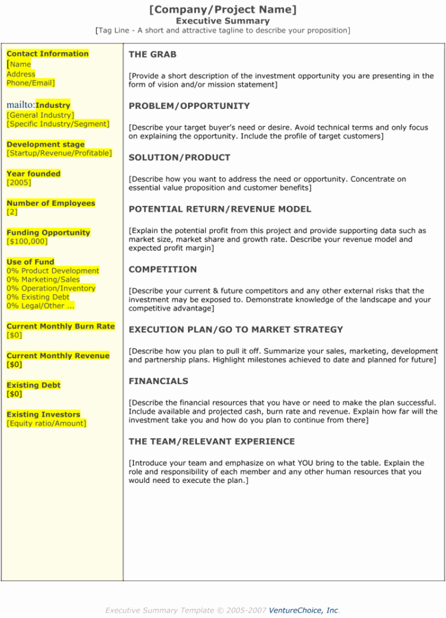 Executive Summary Template for Report Elegant Executive Summary