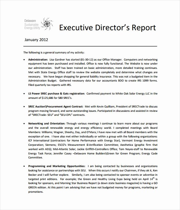 Executive Summary Template for Report Lovely Executive Report Template 15 Free Sample Example