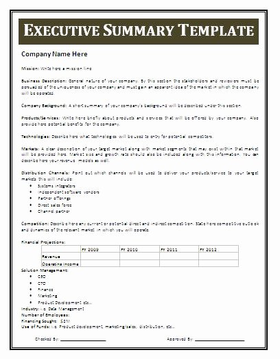 Executive Summary Template for Report Luxury Executive Summary Template