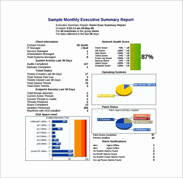 Executive Summary Template for Report Unique Executive Report Template 11 Free Word Pdf Documents