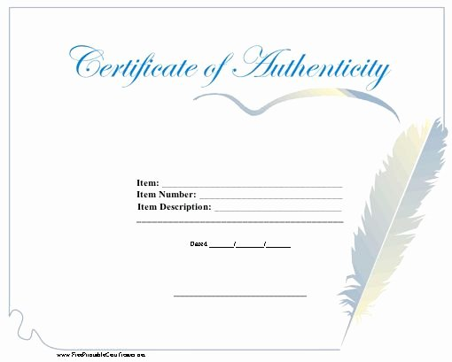 Fake Certificate Of Authenticity Elegant 11 Best Images About Reborn Dolls On Pinterest