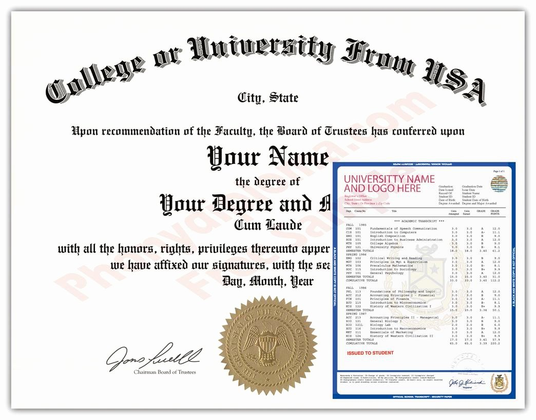 Fake Degree Certificate Template Beautiful Usa Fake College Diploma and Transcripts State Design
