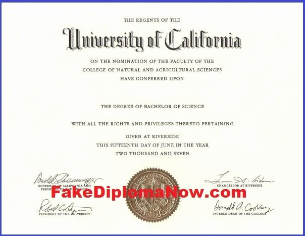 Fake Degree Certificate Template Luxury Our Fake Diploma and Transcript Templates are Exact