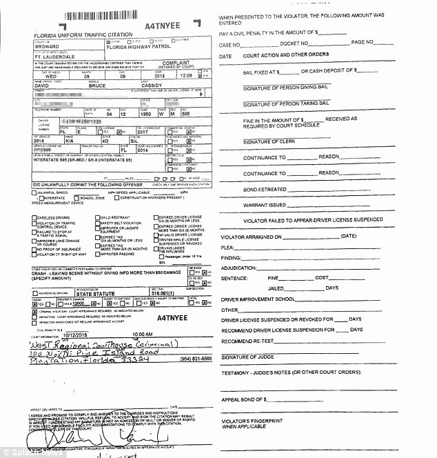 Fake Police Report form Best Of Fake Police Report Car Accident