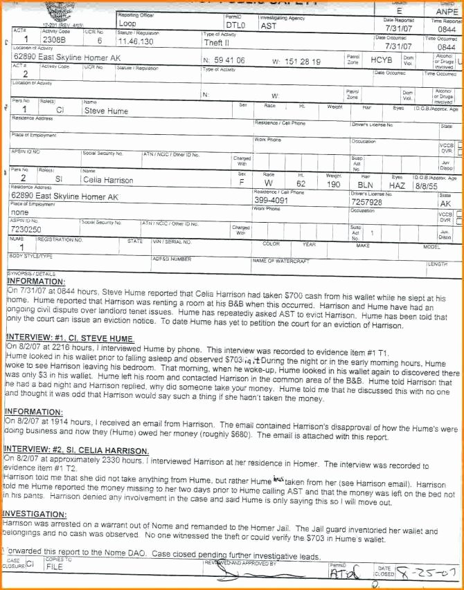 Fake Police Report form Best Of Police Paperwork Templates – Bigredstar