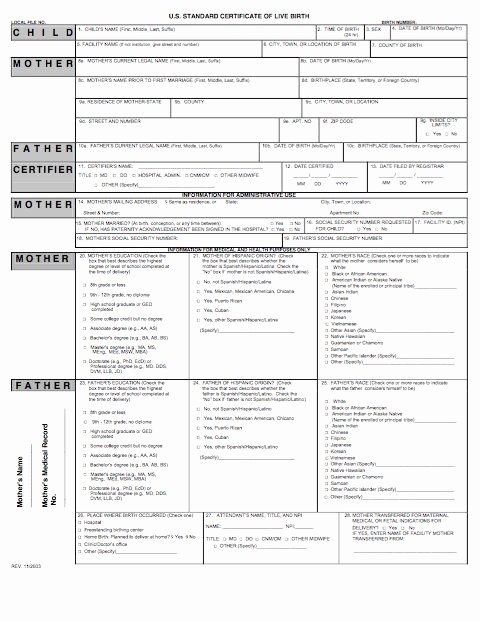 Fake Report Card Generator New 15 Birth Certificate Templates Word & Pdf Template Lab