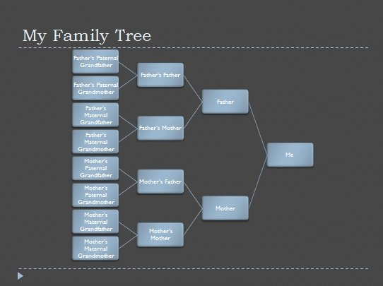 Family Health Tree Template Awesome How to Get Free Genealogy Templates From Microsoft