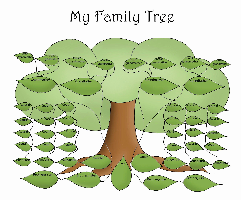 Family Health Tree Template Beautiful Free Editable Family Tree Template Daily Roabox